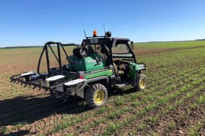 AutoWeed розробляє робота для обприскування цукрової тростини