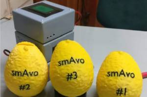 Умный авокадо собирает информацию для производителей