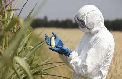 Как биологические стартапы способны поменять сельскохозяйственную отрасль?