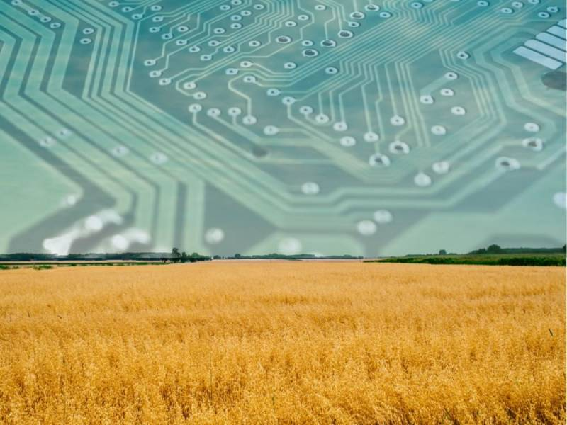 Что даёт сельскому хозяйству использование Big Data?