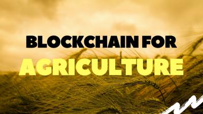Использование блокчейн-технологии в агробизнесе