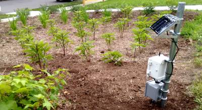 Моніторинг вологості ґрунту — нові можливості для прийняття правильних рішень