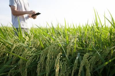 Найкращі аграрні стартапи 2018 року