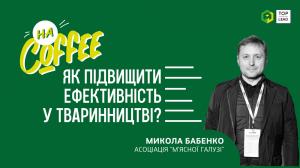 Природні та штучні проблеми українського свинарства