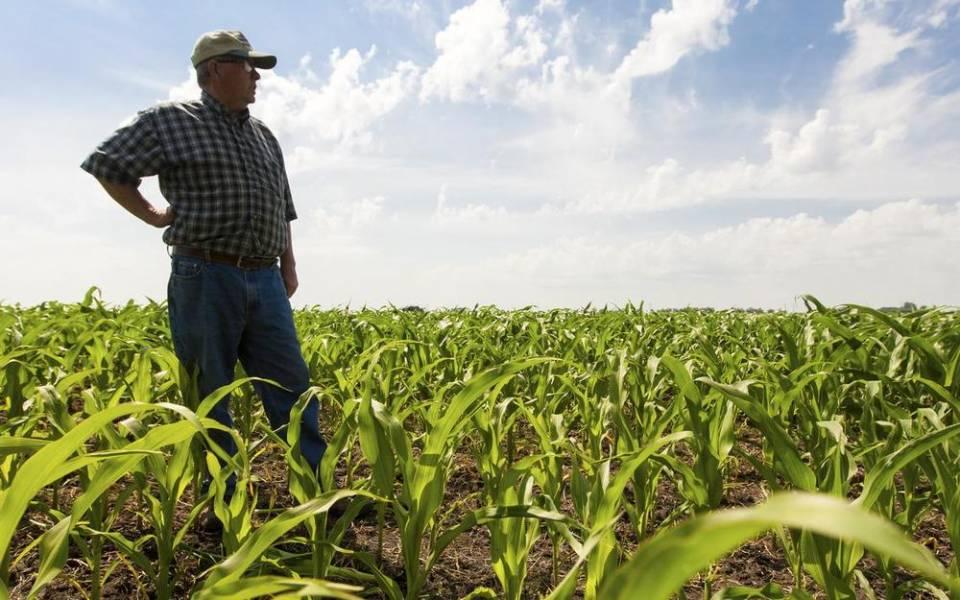 Как аграрию подготовиться к открытию рынка земли?
