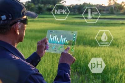 Microsoft устанавливает сенсоры искусственного интеллекта для фермерства в Индии