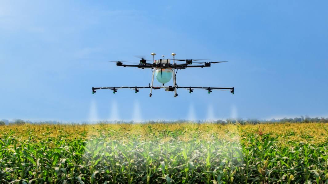 В Индии создают условия для более широкого применения дронов в сельском хозяйстве