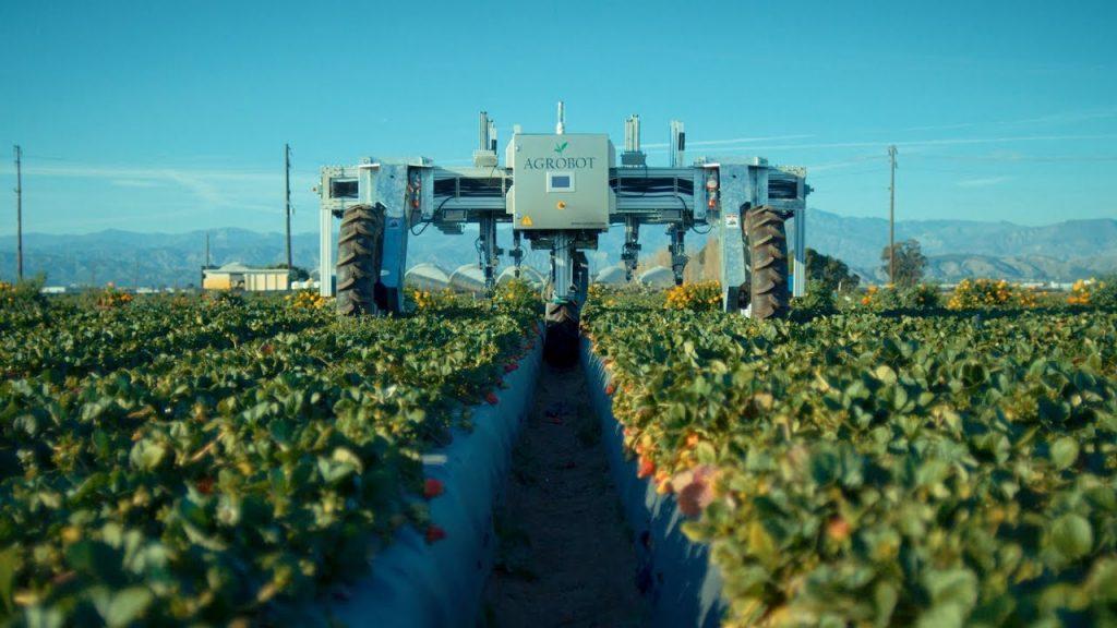 9 перспективних роботів для агросектора