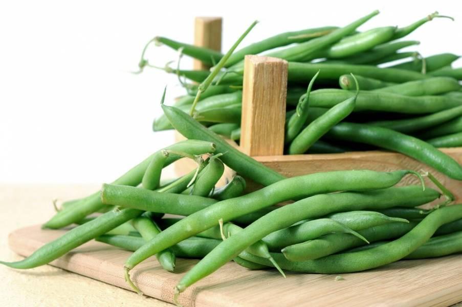 Вирощування квасолі: як отримати 70 тис. гривень з гектару?