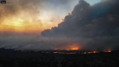 Пожежа в Чорнобилі: допомога дронів (фото)