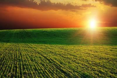 Бразильська  IoT платформа для діджиталізації фермерських операцій виходить на американський ринок