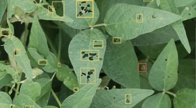 Точное земледелие в Украине: итоги Agro Innovations Forum на InterAGRO
