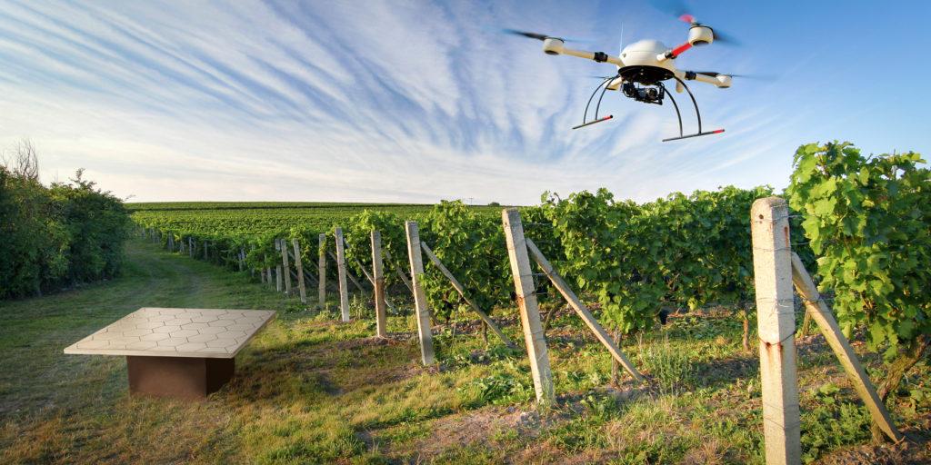 Дроны в сельском хозяйстве: перспективы и главные итоги 2018 года