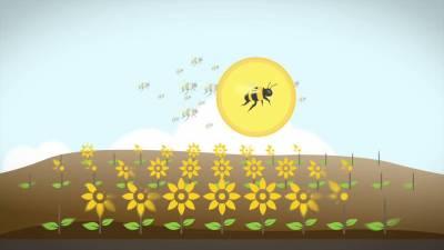IT-технології для пасічників: ТОП-5 компаній, що працюють над розвитком бджільництва