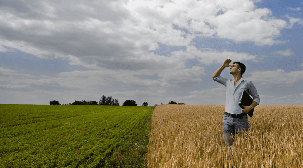 Системы фармменджмента: что это и какие задачи решают?