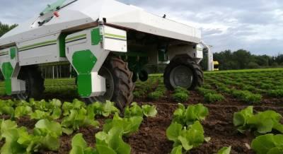 Роботы в сельском хозяйстве: тенденции и развитие