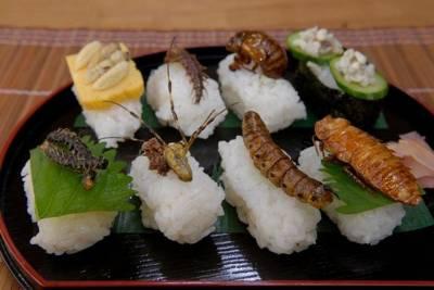 Почему насекомые набирают популярность в качестве корма и пищи