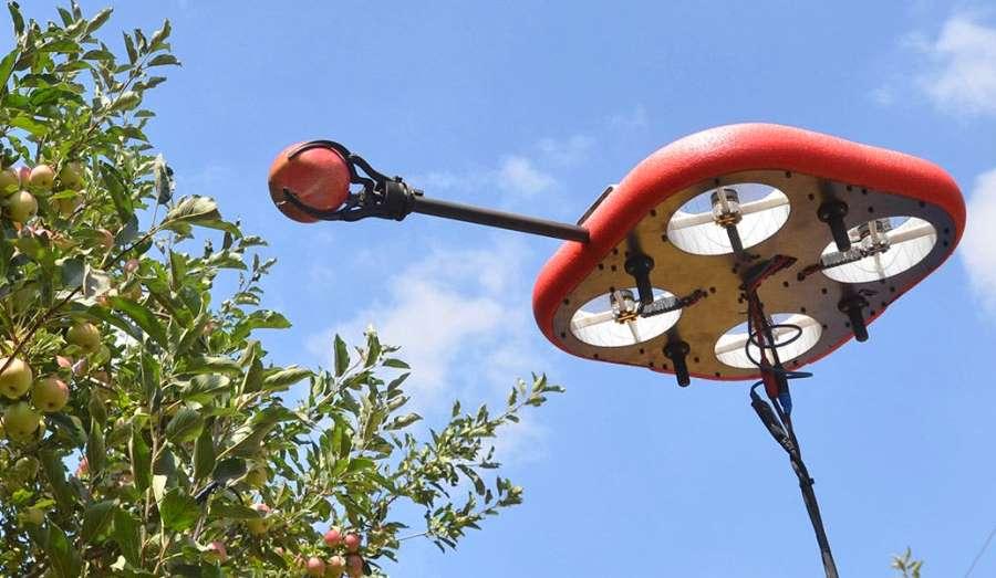 Літаючі збирачі фруктів  — смілива інновація для сільського господарства