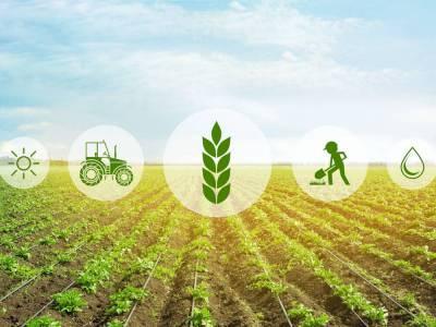 80% инвестиций в агроинновации — в трубу!