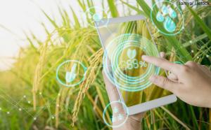 7 agtech инноваций в 2018 году
