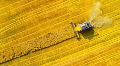 Як розвиваються аграрні стартапи в Німеччині?