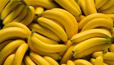 Нідерланди почали вирощувати банани в теплицях