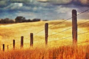 Как сохранить свой земельный банк? Способ борьбы с шахматкой
