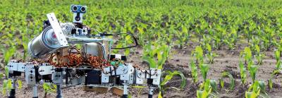 Эффективное сельское хозяйство станет невозможным без внедрения робототехники?