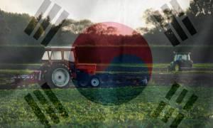 Южнокорейские решения для агросектора в Украине