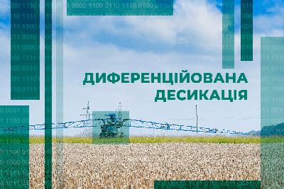Диференційована десикація — підвищення ефективності збору врожаю