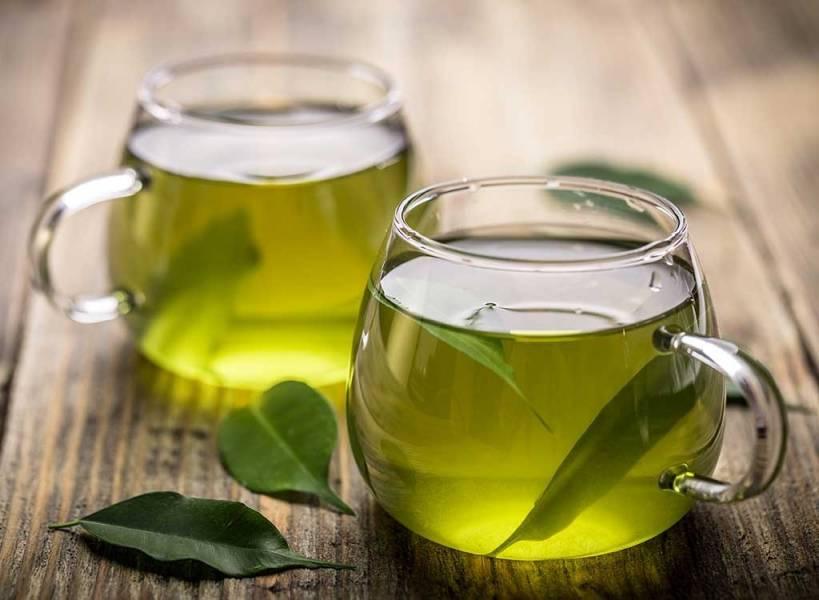 Ученые открыли новый вид чая без кофеина