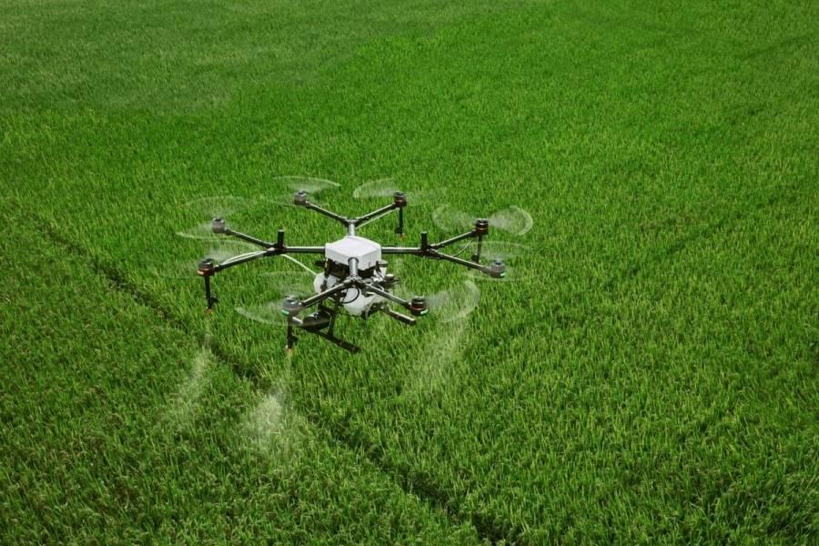 Внесення ЗЗР та добрив дронами — гід аграрія по можливостям, проблемам та постачальникам послуг