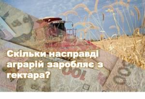 Час рахувати фінанси — скільки насправді аграрій заробляє з гектара?