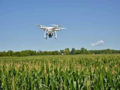 Агросфера — головний драйвер розвитку ринку дронів в Україні