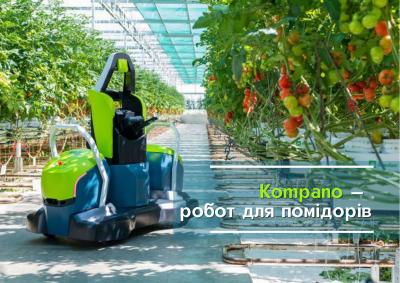 Kompano — робот для помідорів, що працює 24/7