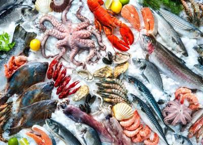 Прибуткова аквакультура: ТОП-6 інноваційних рішень