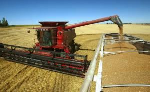 Агровиробники Східної України зможуть розширити ринки збуту