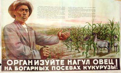 Богарное земледелие или как перестать бояться засухи