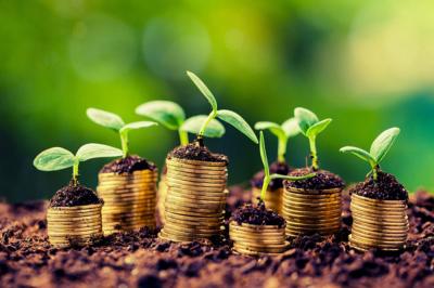 Как правильно организовать финансовый учёт на агропредприятии?
