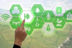 Аграрні інновації 2018: кейси та тренди