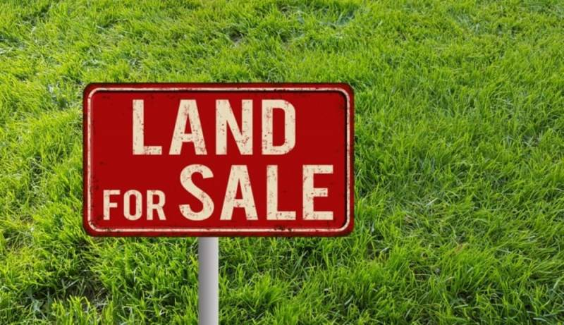 Как рынок земли изменит бизнес-модели в сельском хозяйстве