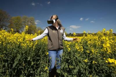 McDonald's застосовує віртуальну реальність для екскурсій фермами постачальників