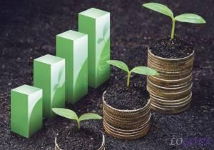 Правильный финансовый учёт и моделирование в агробизнесе