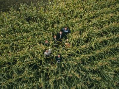 Аналитический подход к точному земледелию от компании OneSoil