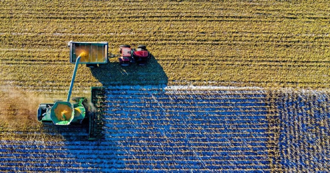 Скоринг землі після відкриття ринку та інші новинки: як може допомогти діджиталізація
