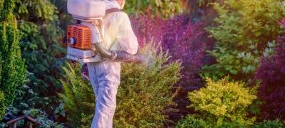 10 шагов к системному контролю над вредителями на полях