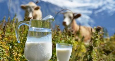 13 мифов о молочной индустрии, которые стоит развенчать сейчас же