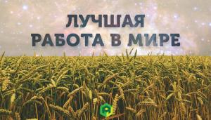 4 самые оплачиваемые технологические профессии агробизнеса будущего