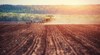 6 стартапов, которые активно работают над улучшениями здоровья почвы