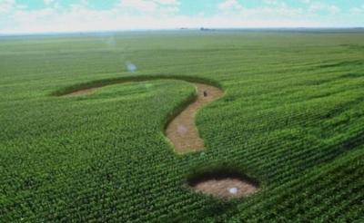 6 важных вопросов о земельной реформе в Украине